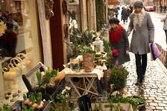 julmarknad i haga och på liseberg