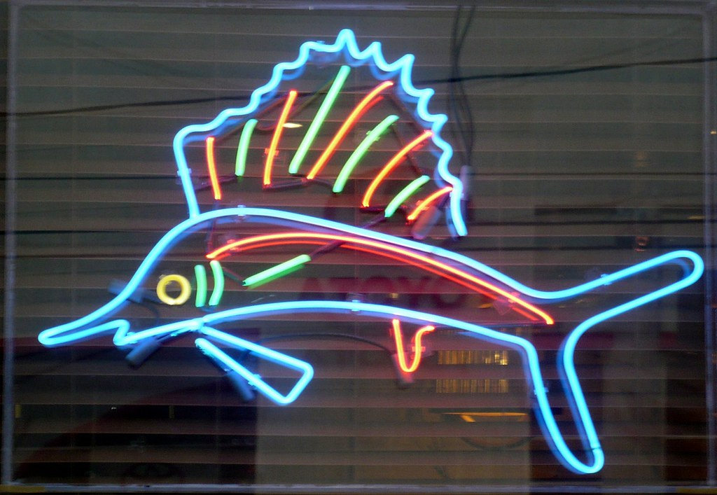 Neon Sailfish