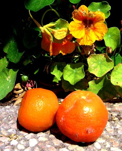 Two oranges.
