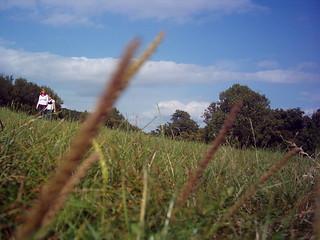 Austrian Hill 2