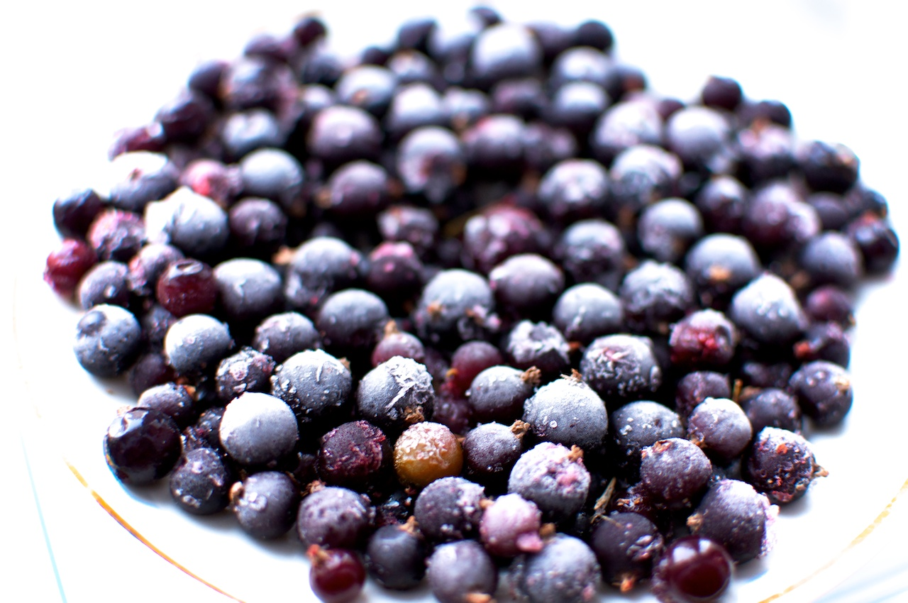 The Black Currant Berry