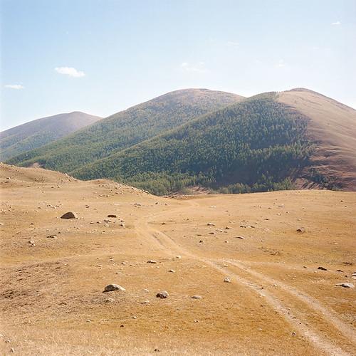 mountain tree nature river kodak mongolia portra yashicamat124g 400nc arkhangaï архангай цэцэрлэг