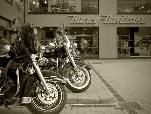 Harley-Davidson tint