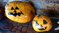 Ambergris Caye - San Pedro - Coconut Halloween