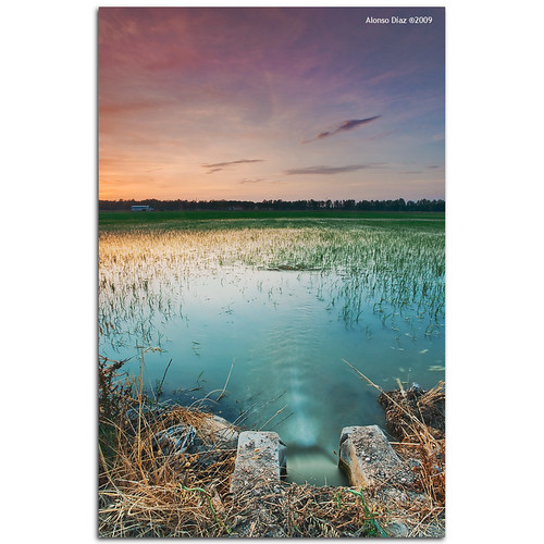 sunset paisajes atardecer landscapes sevilla andalucía sony explore alpha filters ricefields alonso graduated carlzeiss cokin a900 alonsodr lapuebladelrío arrozales gnd8 ltytr1 alonsodíaz alpha900 x121s cz1635mm
