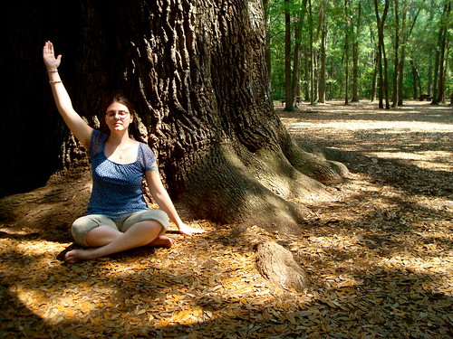 Meditation under the Angel Oak