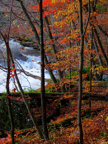 autumn wv westvirginia valleyfalls