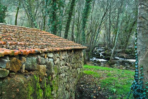 Margens do Rio Dão (Portugal)