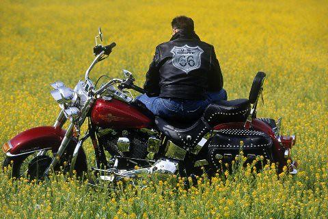 Harley Davidson 6