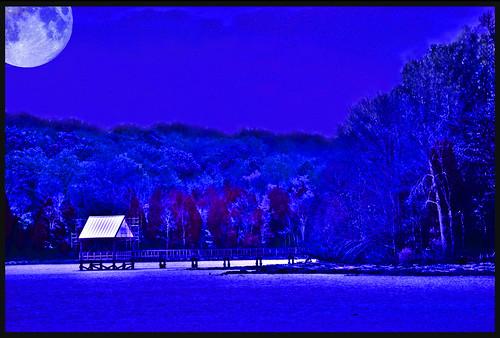 "blue moon lake water photoshop canon evening dock tennessee reflective legacy telephotolens tistheseason glisten monocolor blueribbonwinner silverymoon fineartphotos mywinners longhunterstatepark diamondclassphotographer platinumheartaward goldstaraward rubyphotographer stealingshadows canoneosdigitalrebelxsi miasbest daarklands legacyexcellence flickrvault selectbestfavorites selectbestexcellence sailsevenseas trolledproud newgoldenseal sbfmasterpiece jackaloha2 ""magicalmoments"" ""goldsealings"" exoticimage"