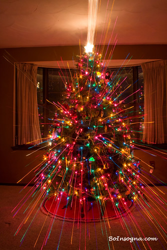 Christmas tree light spikes flickr photo sharing