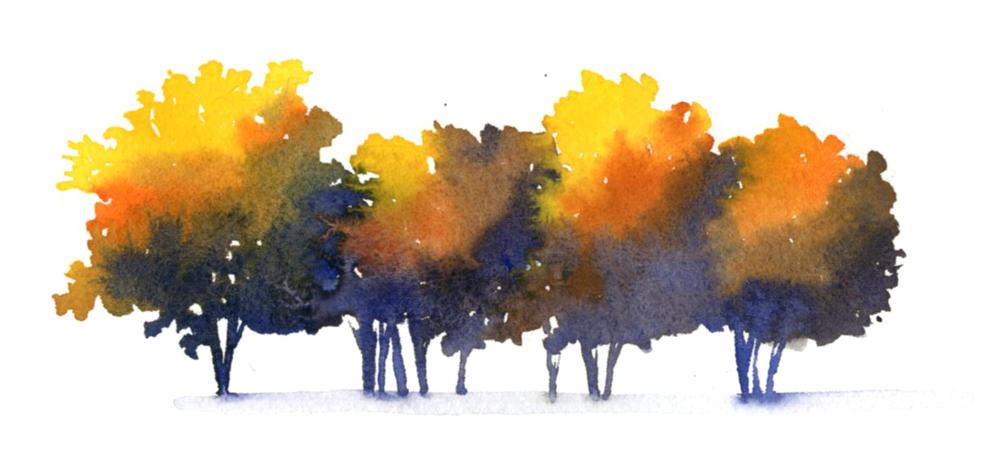 Test Trees