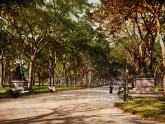Lower end of mall, Central Park, New York City, 1901