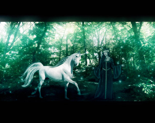 * The Maiden & The Unicorn *