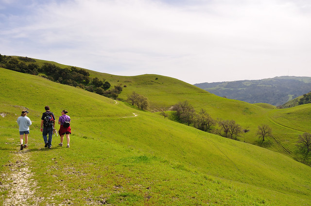 Hiking the Maguire Peaks Loop in Sunol Regional Wilderness
