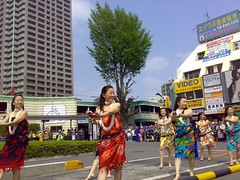 Hula dance performance
