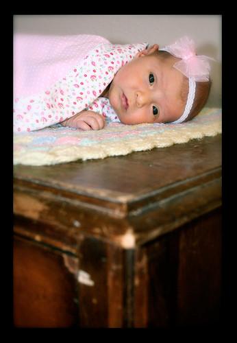 Cheyenne's Newborn Portraits