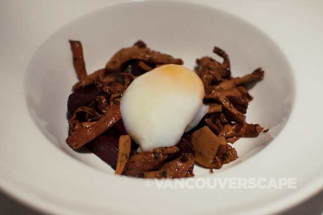 Mushrooms, poached egg