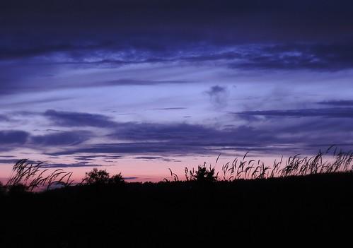sunset silhouette landscape nikon scenery britishcolumbia d3100 nikond3100