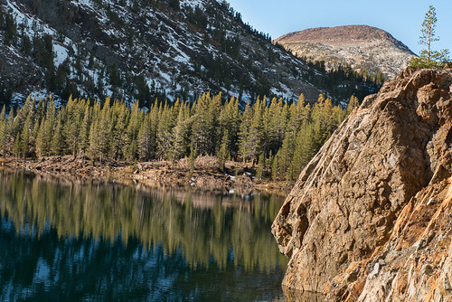 Fall colors in the Eastern Sierra: Ellery Lake