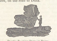 Image taken from page 159 of 'Report on the geology, mineralogy, botany, and zoology of Massachusetts, made and published by order of the government of that state'