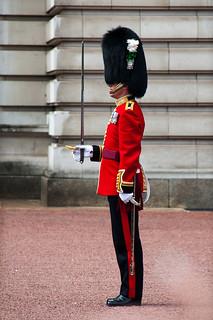 Cérémonie de la relève de la garde à Buckingham Palace - Soldat en détail