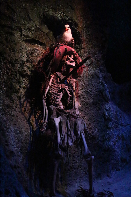 Pirates Skeleton