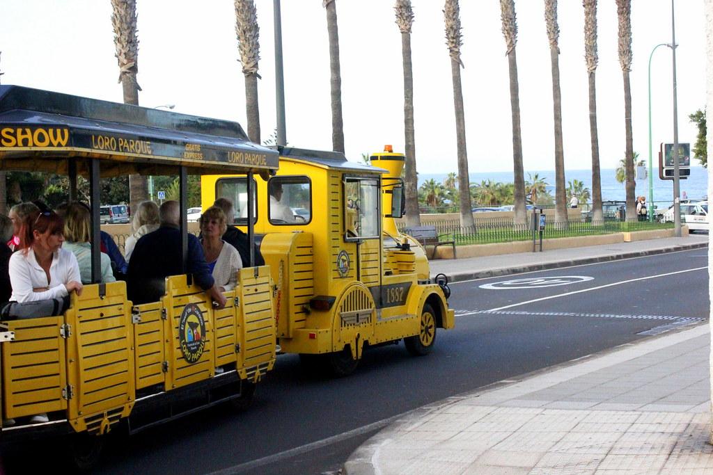 Tenerife 599
