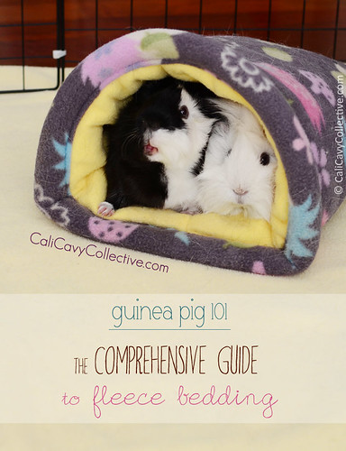 Comprehensive Guide to Fleece Bedding for Your Guinea Pig