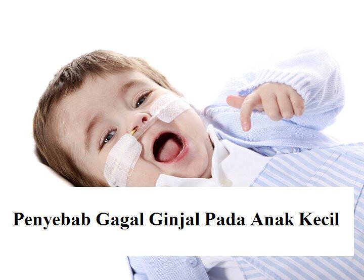 Penyebab Gagal Ginjal Pada Anak Kecil