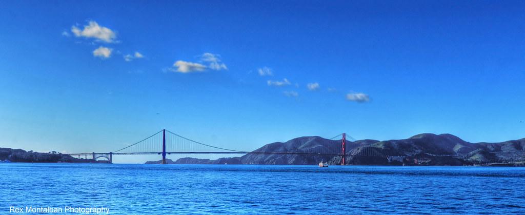 San Francisco, California Pet-Friendly Hotels, Dog