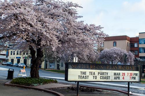 The Tea Party rocks The Mcpherson Playhouse (PHOTOS)