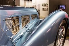 Bugatti Atlantic Fender