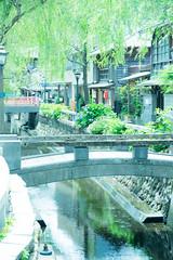 Izu Shimoda 弥治川