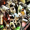#Old #bottles we found