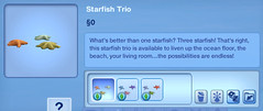 Starfish Trio