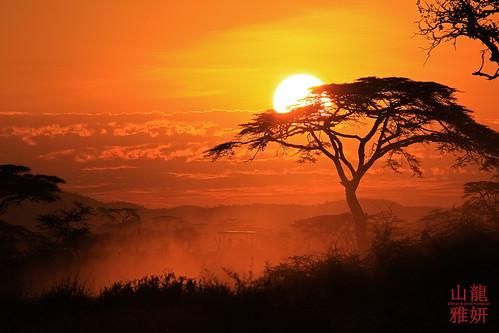 sunset tanzania safari tropicaltrails