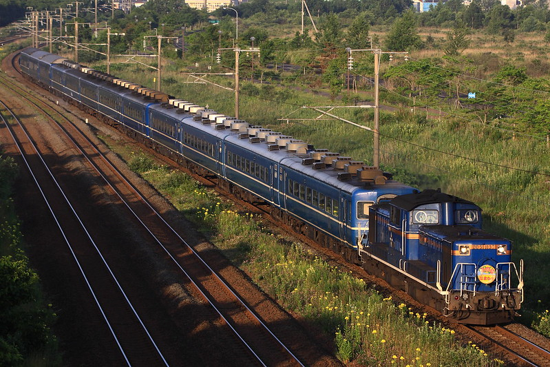 DD51 1137 Exp Hamanasu