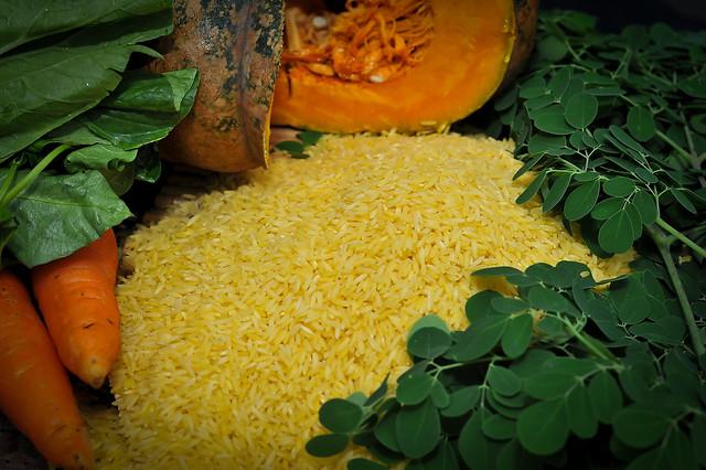 Golden Rice grain with beta carotene-rich foods GN7_0868-10b