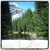 #beautiful  #godscountry  #blessed #pinetrees #rocks #pro_photo_ #allshots_ #nature