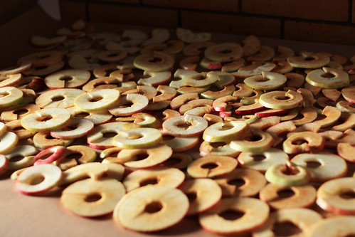 Making applechips