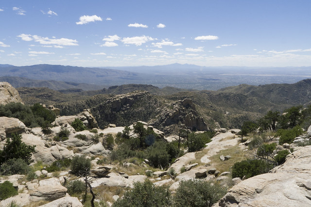 Tucson from Mount Lemmon, Coronado National Forest