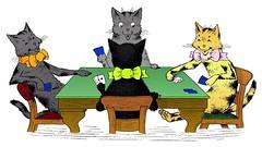 Poker-Playing Cats
