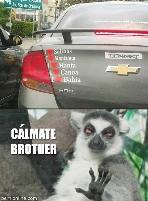 calmate brother