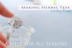 making herbal teas amy renea a nest for all seasons