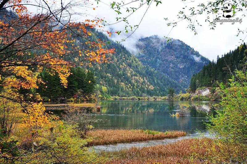 Một ngày với mùa thu Cửu Trại Câu...