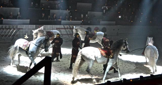 Medieval  Times Orlando Florida- horse show