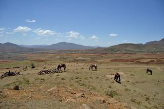 Lesotho Malealea 09 copyright Alexander G. Wiggert