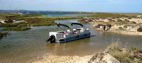 Catamaran Boat