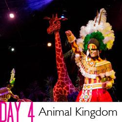 Disney Day 4 Animal Kingdom + Magic Kingdom